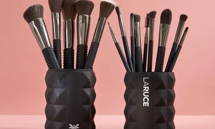 IPSY Laruce Beauty Make Up Brushes Instagram Giveaway