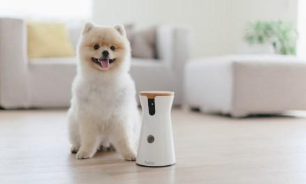 FREE Furbo Dog Camera