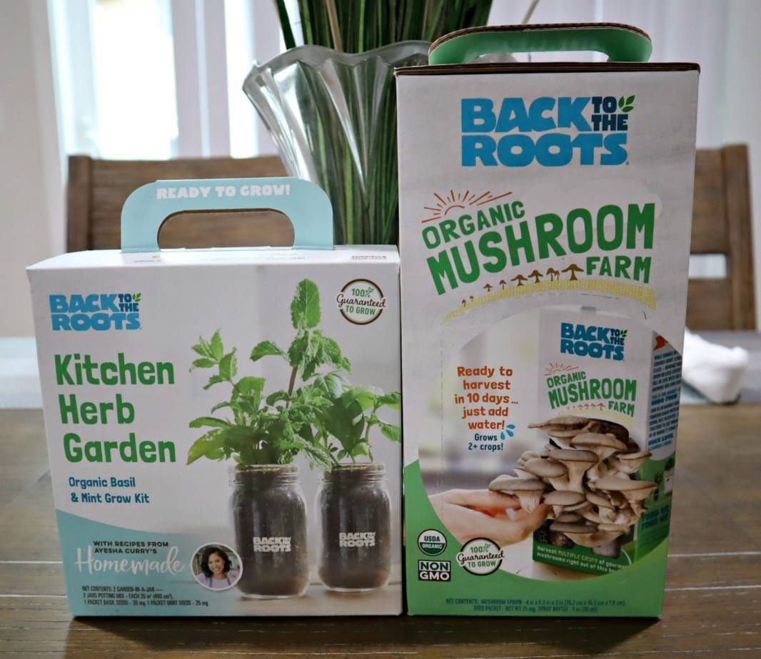 free-back-to-roots-grow-kits