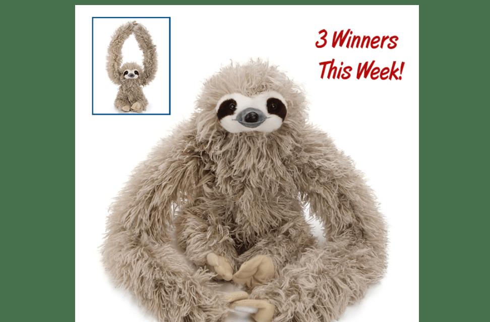 Stuffed Sloth Giveaway