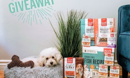 The Honest Kitchen National Dog Week Giveaway