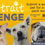 Pet Portrait Challenge Sweepstakes