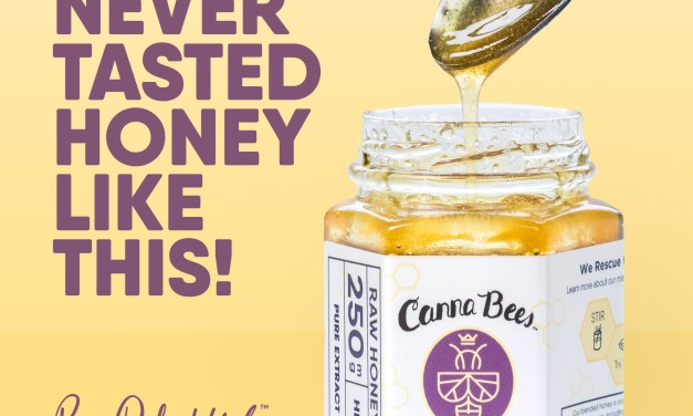 FREE Bee Delightful CBD Honey Sample