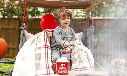 Radio Flyer Build a Wagon Instagram Giveaway