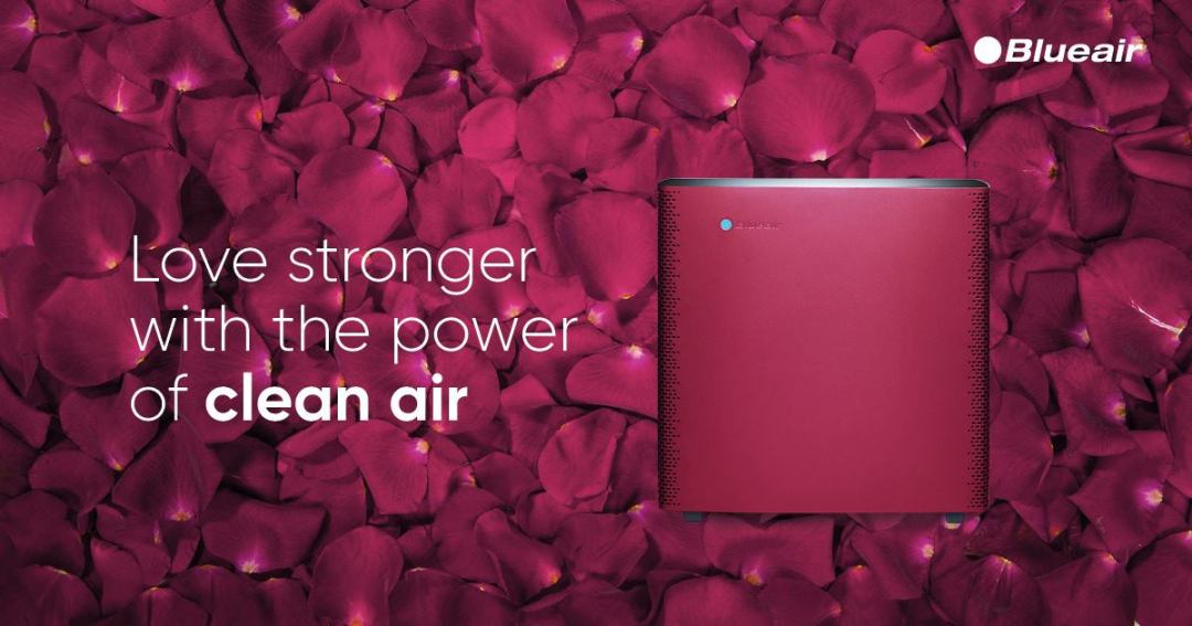 free-bluair-purifiers-and-accessories