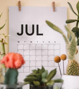 Free Frigo Emily Ellyn 2021 Calendar