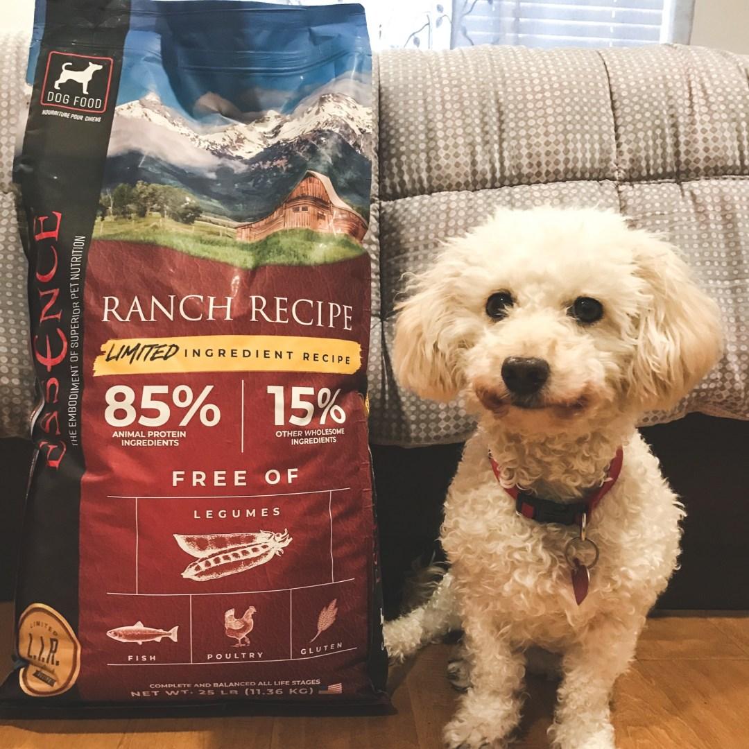 free-essence-pet-food-samples
