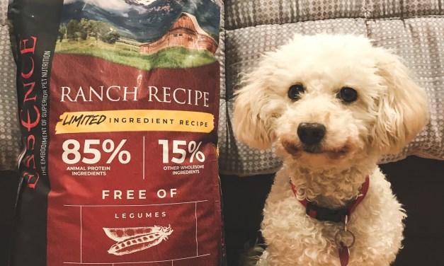 FREE Essence Pet Food Samples