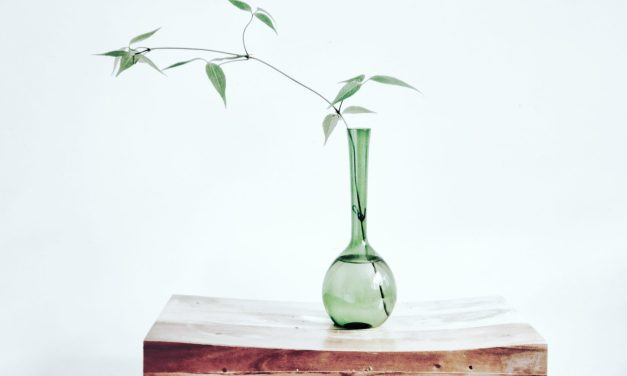 FREE Glass Vase