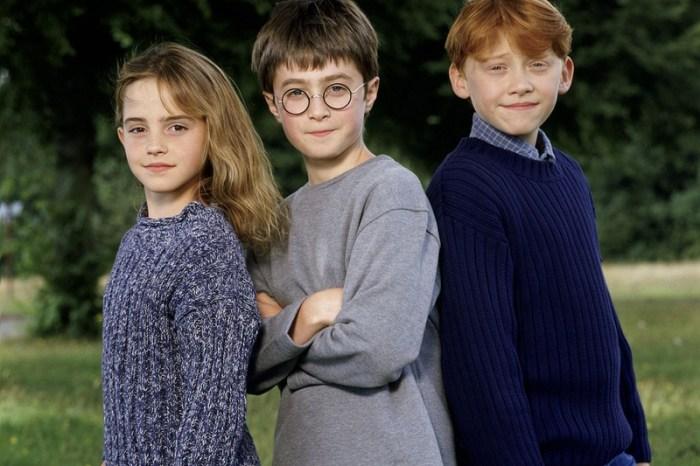 「發展事業還是回歸家庭比較快樂?」榮恩的選擇跟哈利和妙麗完全不一樣!《哈利波特》— 我們用電影寫日記