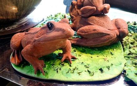A close look at the chocolate frogs, I love the contrasting colours!