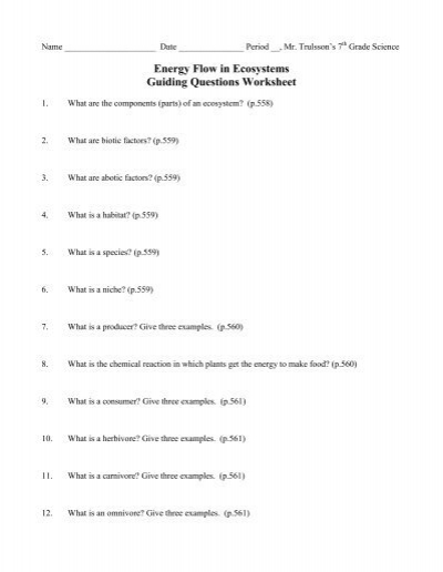 Energy Flow In Ecosystems Guiding Questions Worksheet