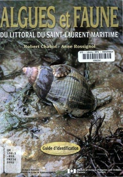 Tortue De Terre Morte Subitement : tortue, terre, morte, subitement, Algues, Faune, Littoral, Saint-laurent, Maritime, Pêches