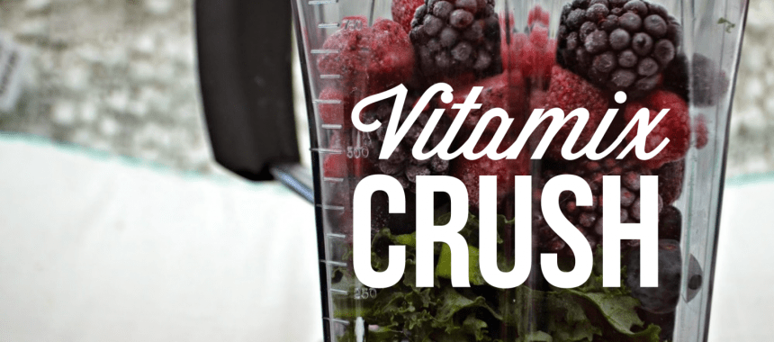 Vitamix Crush