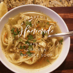 Heavenly Homemade Natural Chicken Noodle Soup