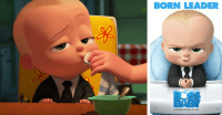 The Boss Baby  YuneOh Events