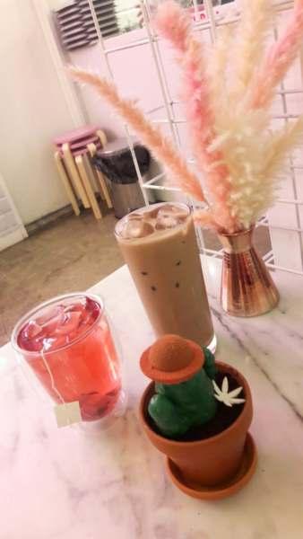 gateaux Cactus au café Dessert Lab