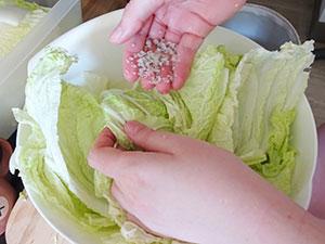 kimchi etape 4