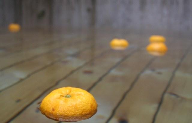 冬至の柚子湯の作り方と由来は?江戸時代の文化で現代は入浴剤いい?