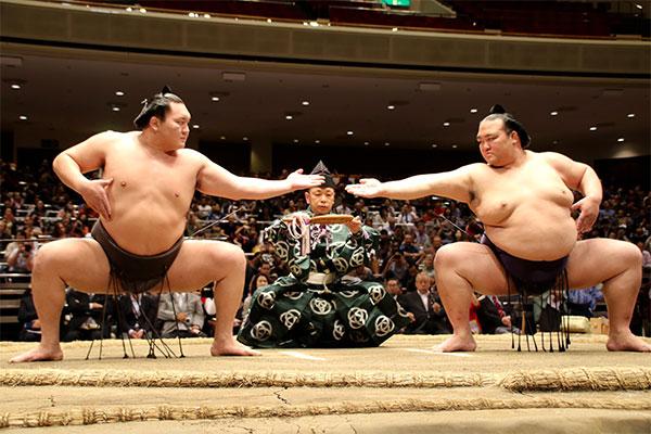 子供相撲に女の子は参加資格なし?伝統を重んじる相撲業界の本音は?