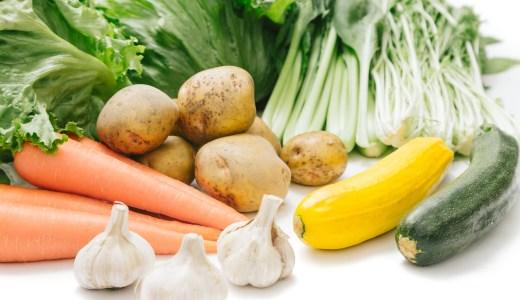 きゅうりは栄養素が低いギネス記録保持!食べるメリット・デメリット