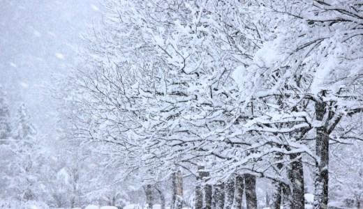 立冬に食べるべき2つの物とは?冬至との違いと季語もご紹介!