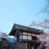 松代城と桜
