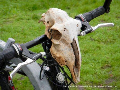 cool bike ornament