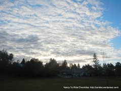 clouds above Holiday Highlands Park