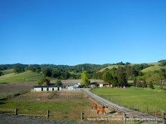 horse ranch & farm on Reliez