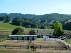 horse ranch-Reliez Valley Rd