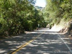 up shady Stonybrook Canyon