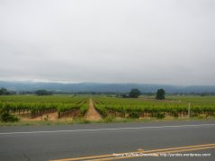 view of Napa Valley