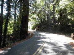 climb up Pinehurst @ Canyon Rd