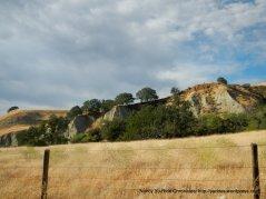 grasslands-lower Mines