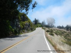 Panoramic Hwy to Muir Woods