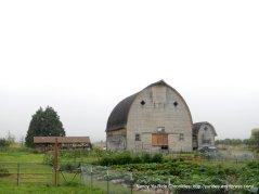 beautiful shaped barn
