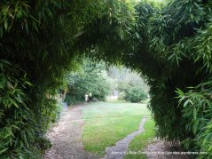 path to garden area