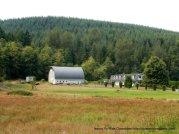 farm house and barn