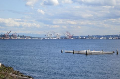 view from Smith Cove Park