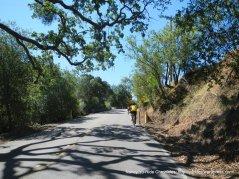 climb up Foothill Rd