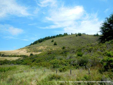 Pescadero hills