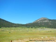 hope valley meadows