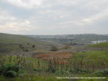 sulphur springs valley