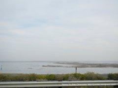 lopes rd views