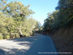 steep section-summit rd