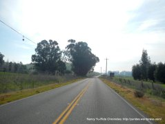 collinsville rd