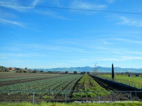 union rd farmland