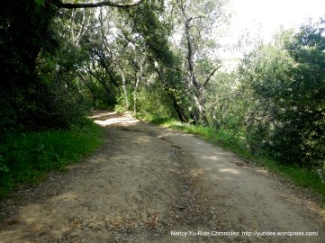 old briones trail