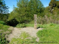 to deer creek/briones crest trails